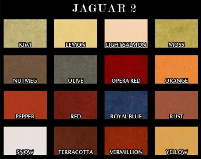 https://www.varvara.de/perfectsc/Projekt242013/jaguar1.jpg